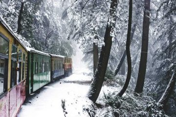 Shimla Toy Train Picture 1